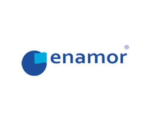 enamor_logo_new